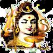 Shiv Bhageerthi Viklang Sikshan Prisikshan Sansthan